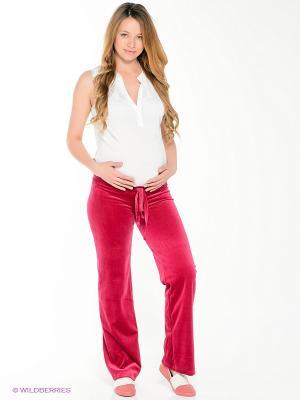 Брюки для беременных 40 недель. Цвет: бордовый