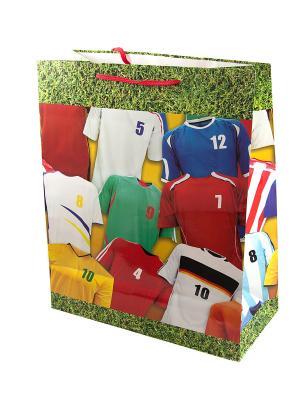 Комплект пакетов из 12шт. 41*49см Русские подарки. Цвет: зеленый