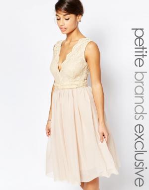 John Zack Petite Платье для выпускного с глубоким декольте и кружевным лифом. Цвет: кремовый