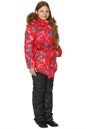 Куртка и брюки Top Klaer. Цвет: красный, синий
