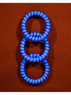 Резинка пружинка 3 шт. Bizon. Цвет: синий