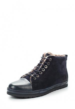 Ботинки Rosconi. Цвет: синий