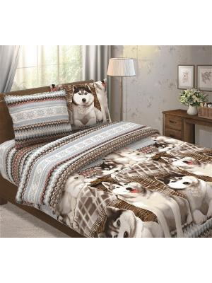 Комплект постельного белья Традиция. Цвет: серо-голубой, коричневый
