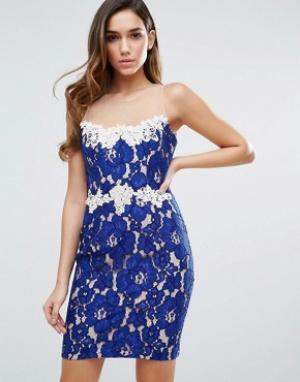 Forever Unique Кружевное платье мини. Цвет: синий