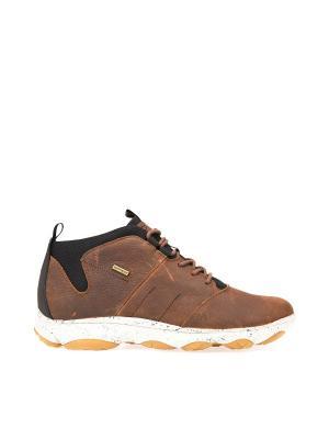 Ботинки GEOX. Цвет: светло-коричневый, коричневый