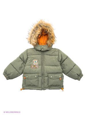 Куртка Baby Club. Цвет: зеленый
