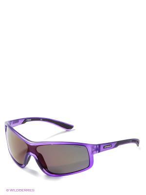 Солнцезащитные очки Polaroid. Цвет: фиолетовый, антрацитовый