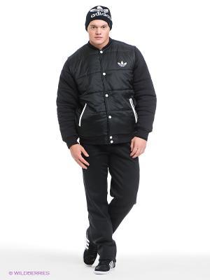 Утепленные брюки Winter Adidas. Цвет: черный
