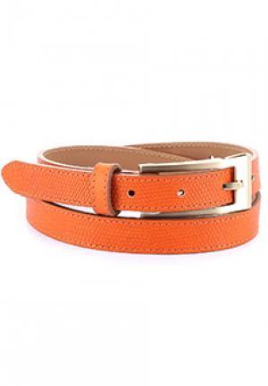 Пояс ALTER EGO. Цвет: оранжевый