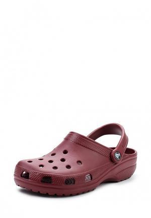 Сабо Crocs. Цвет: бордовый