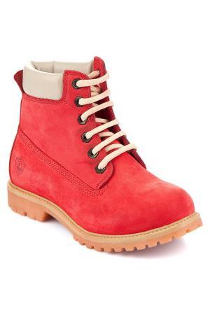 Ботинки INCI. Цвет: красный