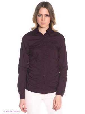 Блузка LERROS. Цвет: темно-бордовый