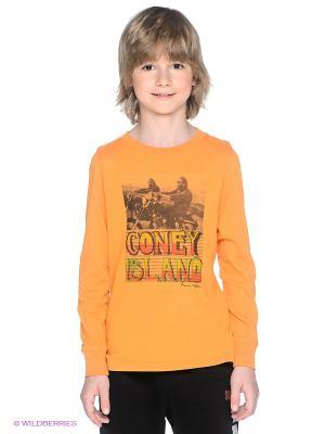 Лонгслив American Outfitters. Цвет: оранжевый