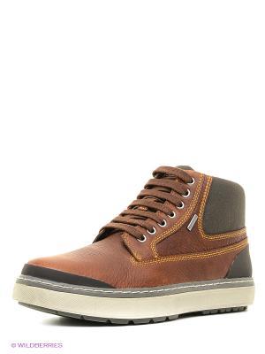 Ботинки GEOX. Цвет: коричневый, серый