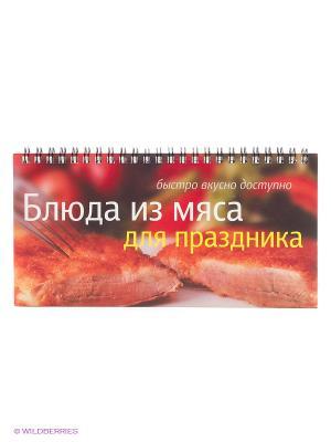 Блюда из мяса для праздника АЙРИС-пресс. Цвет: коричневый, красный