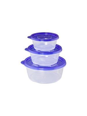 Набор из 3-х круглых контейнеров XEONIC CO LTD. Цвет: синий, прозрачный