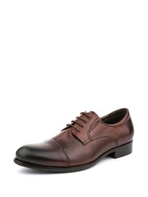 Туфли Zenden. Цвет: коричневый
