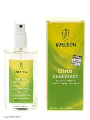 Цитрусовый дезодорант Weleda. Цвет: салатовый