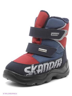 Ботинки Skandia. Цвет: красный, синий