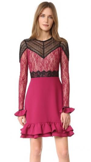 Платье Rosa Three Floor. Цвет: сливовый/черный