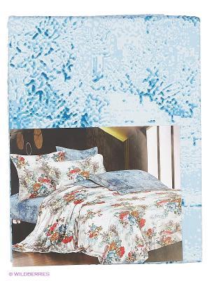 Комплект постельного белья 2 сп. сатин, рисунок 673 LA NOCHE DEL AMOR. Цвет: голубой