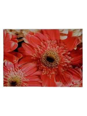 Плейсмат набор 2шт, принт Герберы, ткань с водоотталкивающей пропиткой Dorothy's Нome. Цвет: красный