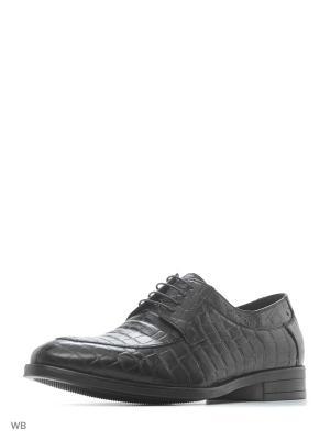 Ботинки Hortos. Цвет: черный