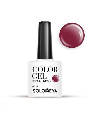 Гель-лак Color Gel Тон Burgundy SCG141/Бургундия SOLOMEYA. Цвет: темно-бордовый