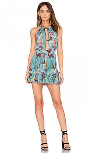 Платье gaia SAM&LAVI. Цвет: синий
