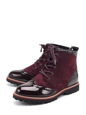 Ботинки TF. Цвет: бордовый
