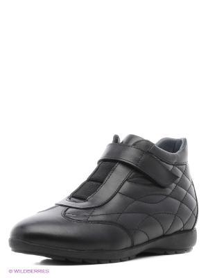 Кроссовки Vitacci. Цвет: черный