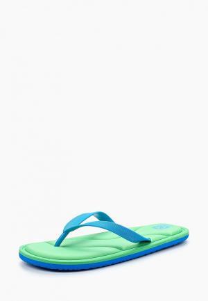 Сланцы Kakadu. Цвет: голубой