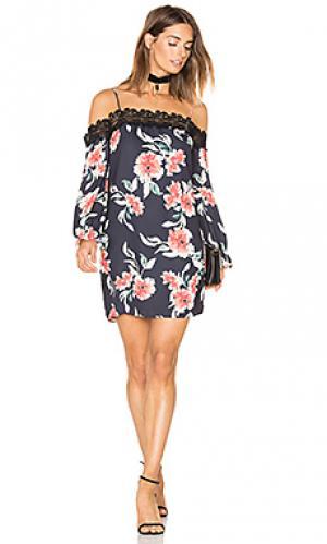 Платье в цветочек whispering Eight Sixty. Цвет: черный