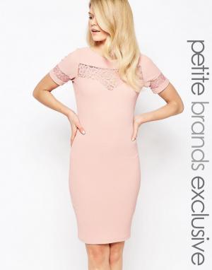 Paper Dolls Petite Платье-футляр с кружевной вставкой. Цвет: розовый