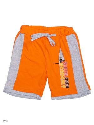 Шорты MIKIVIKI. Цвет: оранжевый