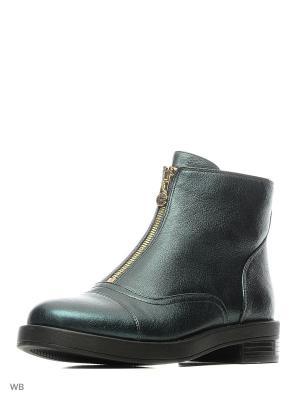 Ботинки PINIOLO. Цвет: зеленый