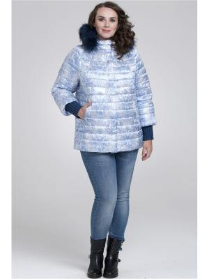 Куртка Modress. Цвет: синий, белый