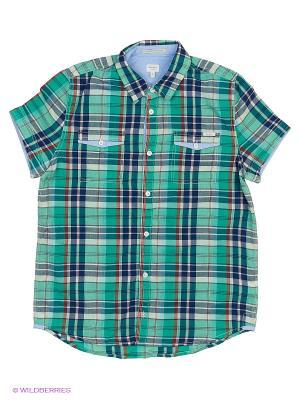 Рубашка PEPE JEANS LONDON. Цвет: зеленый, коралловый, желтый