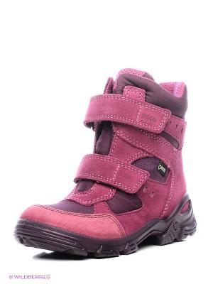 Полусапожки ECCO. Цвет: розовый, сиреневый