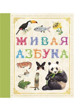 Живая азбука Росмэн. Цвет: зеленый