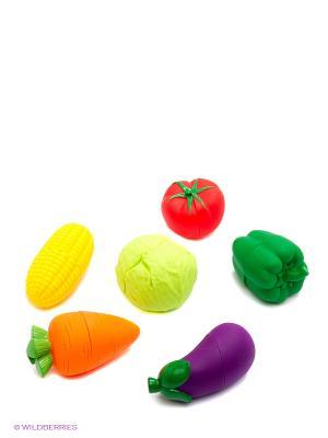 Овощи K'S Kids. Цвет: красный, оранжевый, желтый, зеленый, салатовый, фиолетовый