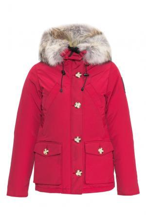 Парка-пуховик с мехом койота 152305 Arctic Bay. Цвет: красный