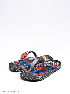 Шлепанцы Spider-Man. Цвет: черный, синий, красный