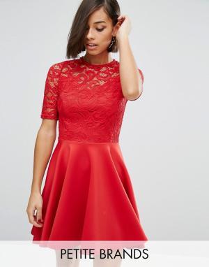 John Zack Petite Шифоновое приталенное платье с кружевом. Цвет: красный