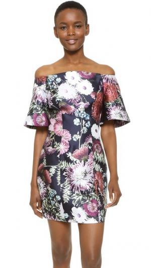Платье Stand Still Keepsake. Цвет: темный цветочный принт