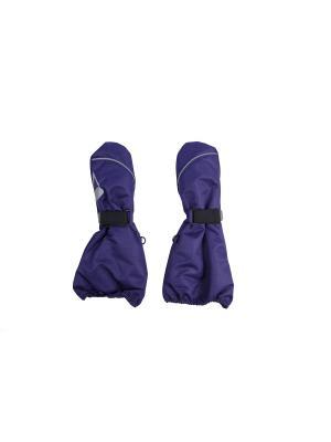 Краги Oldos. Цвет: темно-фиолетовый