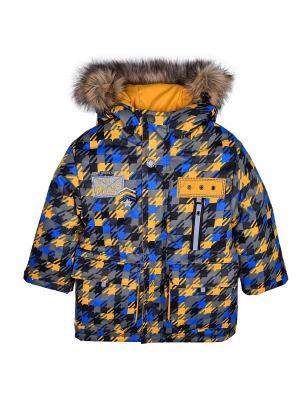 Куртка WOW. Цвет: синий