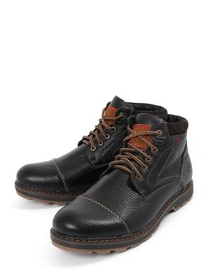 Ботинки Tofa. Цвет: черный