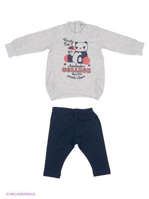 Комплект одежды MANAI. Цвет: серый