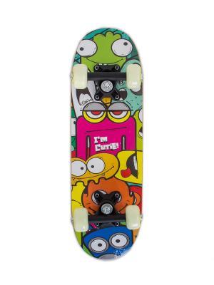 Скейтборд KIDS 1 Larsen. Цвет: розовый, желтый, синий, зеленый